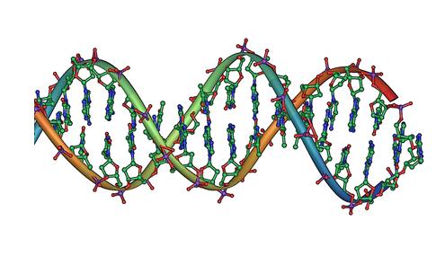 Hebrew university Israel, multiple diseases, DNA